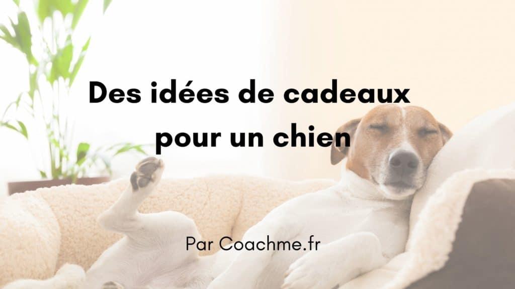 idées de cadeaux chien
