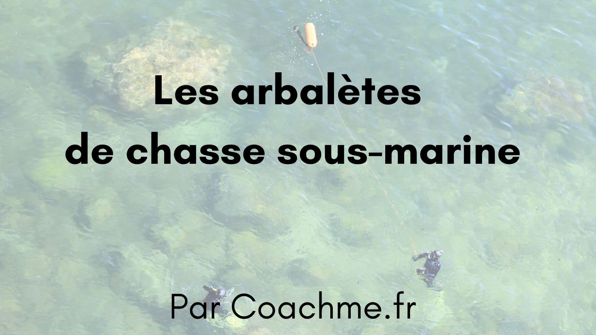 arbalete chasse sous marine